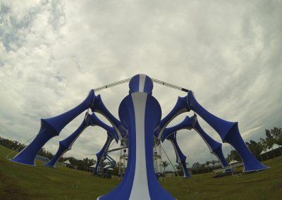 Aranha Azul